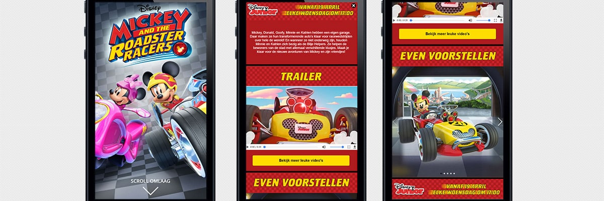 Disney Junior: Mickey and the Roadster Racers - canvas